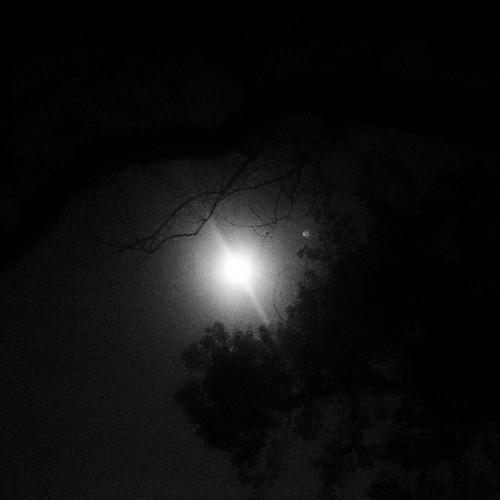 明晚有月全食,希望天氣跟今晚一樣好。