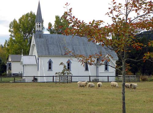 church sheep aotearoa wairarapa placeofworship tinui castlepointweekend 52pictures2015 52pictures39placeofworship