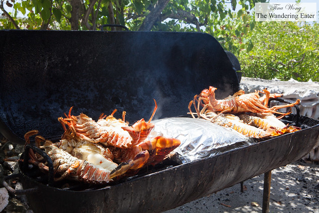 Grill full of fresh Angiuilla lobsters
