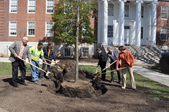 MD Arbor Day 2015