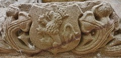 Hidden away beneath the lower opening of the sacrament house at old Kinkell Church, Inverurie is this wee sandstone lion rampant