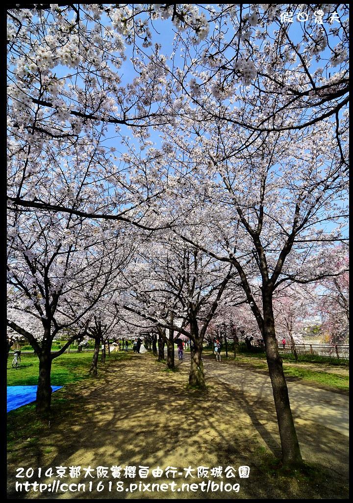 2014京都大阪賞櫻自由行-大阪城公園DSC_1686