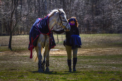 Horses - The Show Place, Upper Marlboro, Maryland