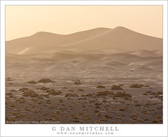 Dust Storm, Early Evening