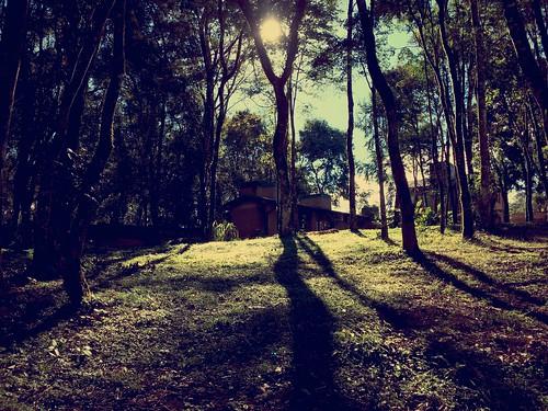 Autor: sergio.sarlej