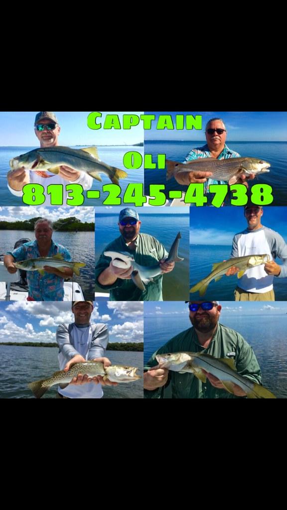 Tampa fishing guide charter