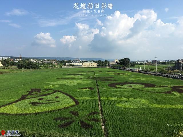 花壇彩繪稻田_000