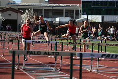 sprint, steeplechase, athletics, track and field athletics, 110 metres hurdles, championship, obstacle race, 100 metres hurdles, sports, running, race, recreation, outdoor recreation, hurdle, person, hurdling, athlete,