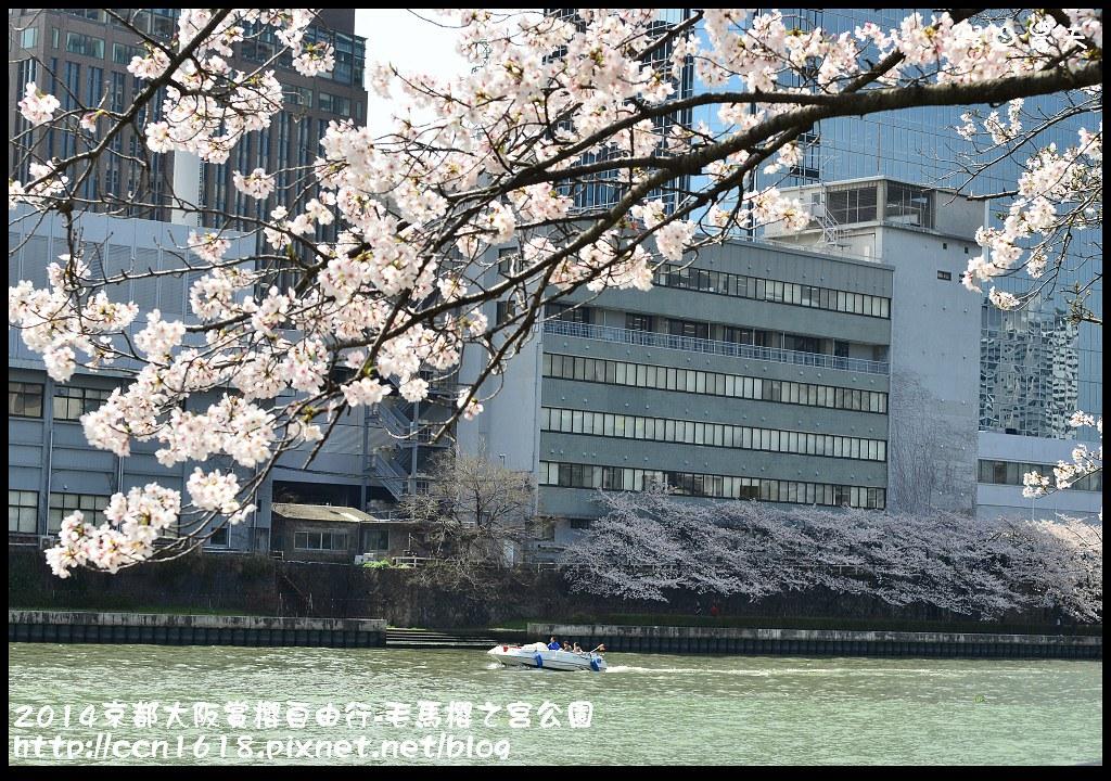 2014京都大阪賞櫻自由行-毛馬櫻之宮公園DSC_1961