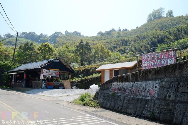 劉正男高冷草莓園  (18)