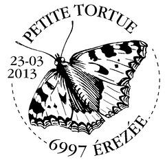 07bis Papillon Petite tortue