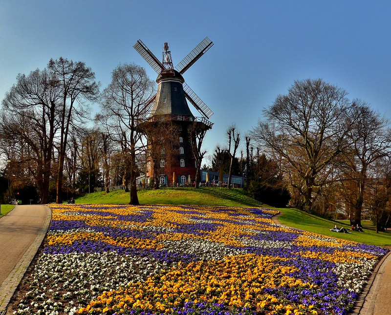Spring in my city:)