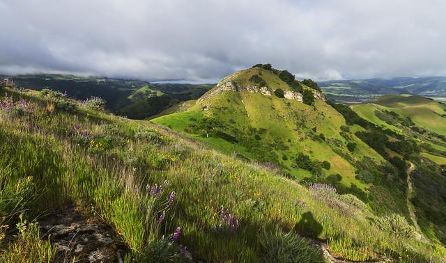 Maguire Peak