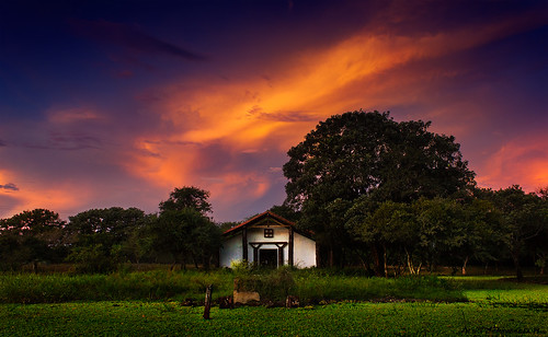 sunset sunlight green landscape amazon bolivia lagoon trinidad fineartphotography amazonia beni littlechurch canon550d