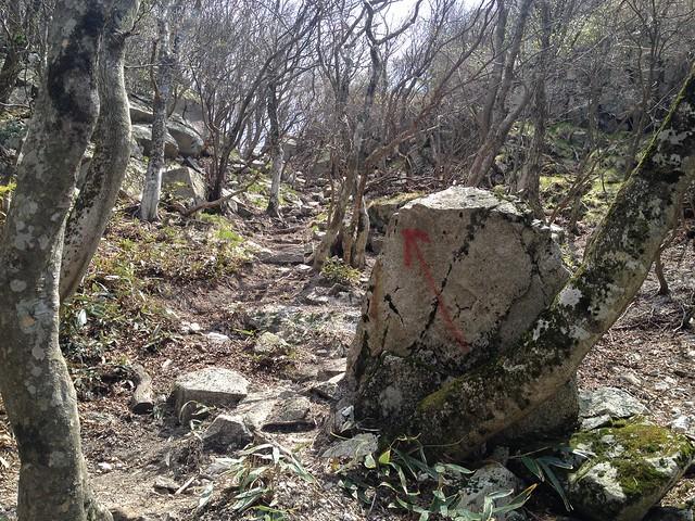 釈迦ヶ岳 中尾根登山道 岩場迂回路