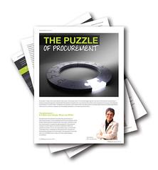 TFM Puzzle of Procurement