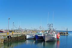 NS-01578 - Clark's Harbour