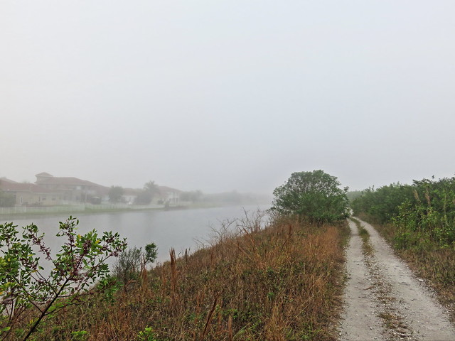 Levee trail southbound fog 20150325