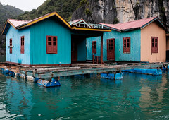 Halong bay houses 2