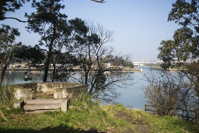 Isla Pedrosa