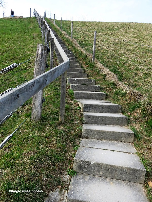 Steps from River Aar to village Feldbrunnen