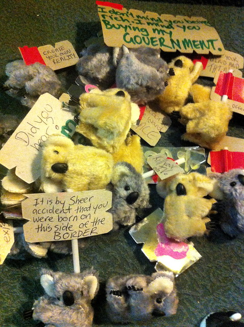 Occupy Small Street Koalas