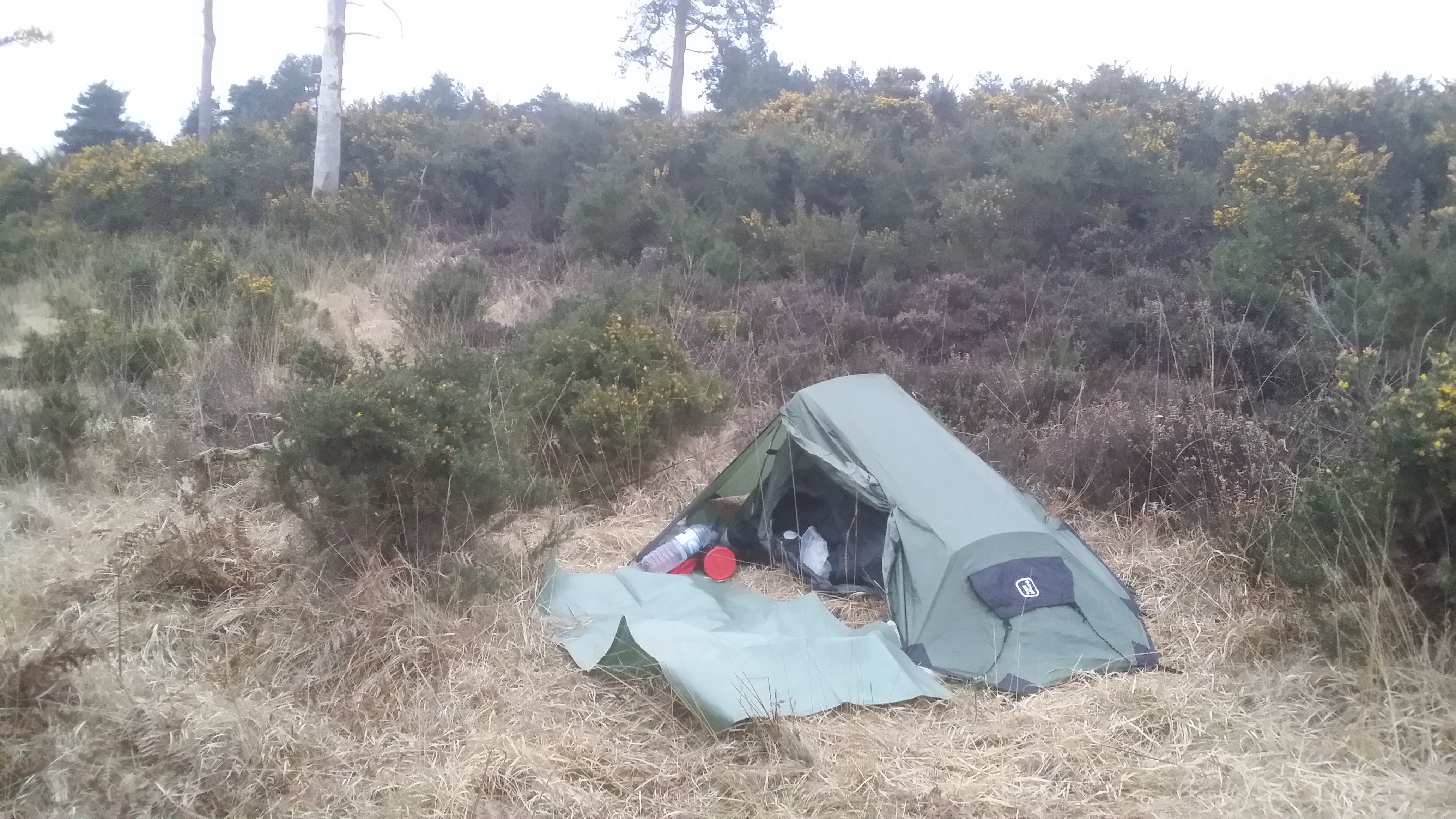 Camp in Ashdown Forest #Wealdway #sh