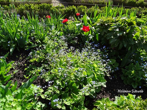 St Jean de Beauregard - grande fête des plantes