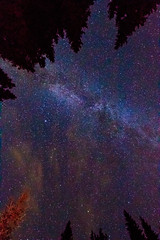 The many stars