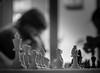 Canada Water Chess Club-20150328-10.jpg