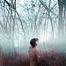 enchanted by Giulio Musardo