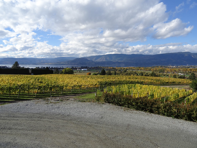 Image of Okanagan wineries in October