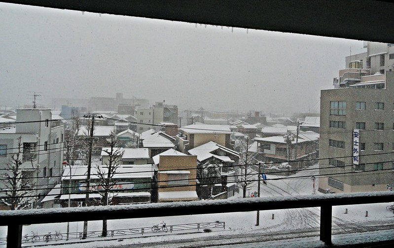 Snow in Kawasaki