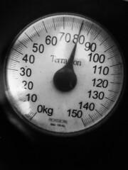 80 kgs... - Photo of Saint-Crépin