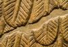 Assyrian diety's wing detail
