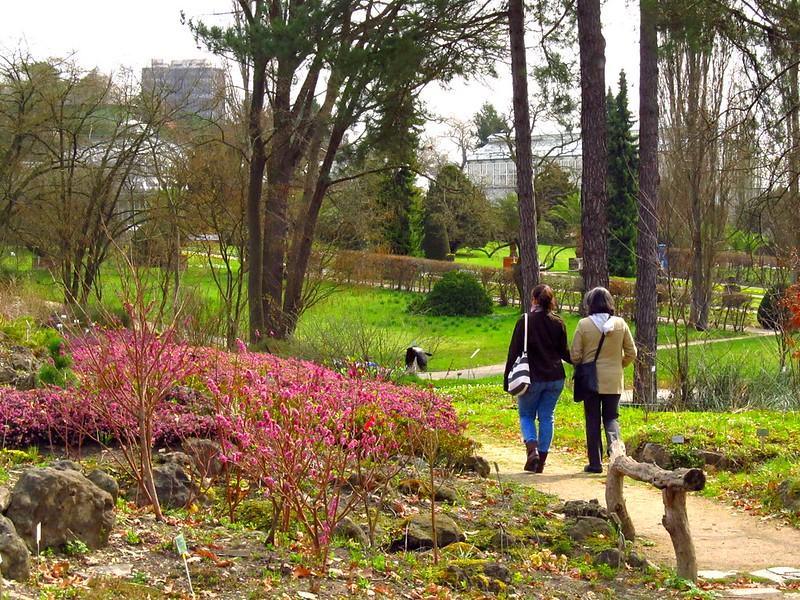 Jardim Botânico de Berlim - AgendaBerlim.com Foto Pacelli Luckwu