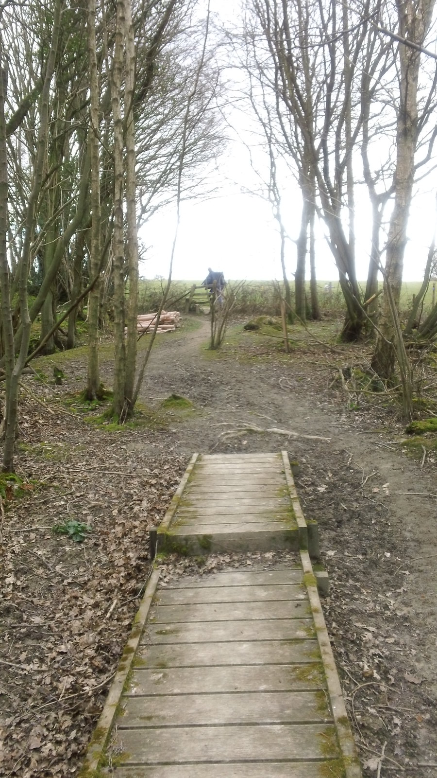 Over the boardwalk, over the stile