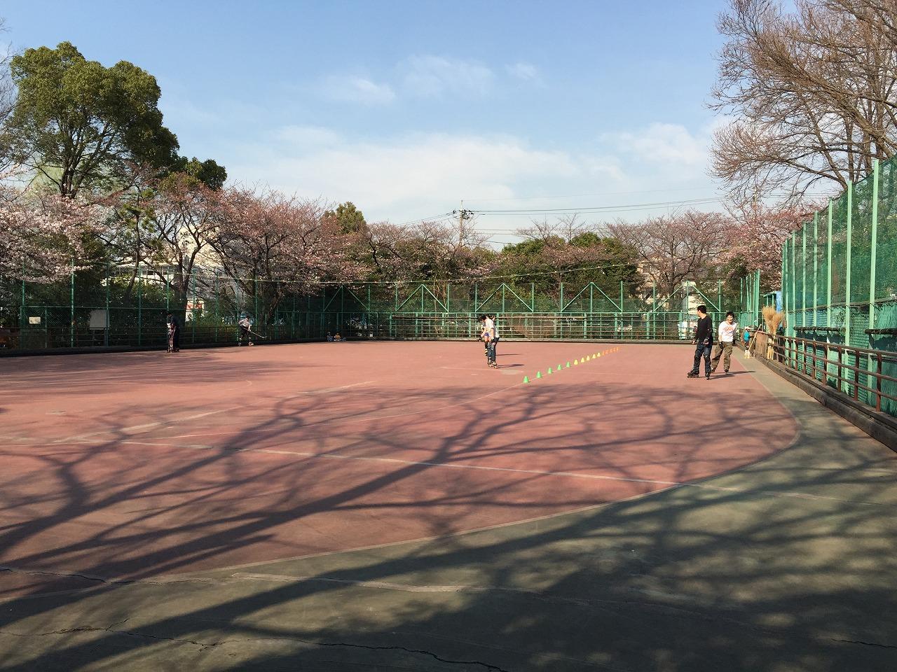 20150328_成増北第一公園 (1)