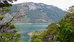 Szlak Costara, zatoka Lapataia- Tiera del Fuego National Park