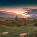 the crack of dawn over a greyton landscape
