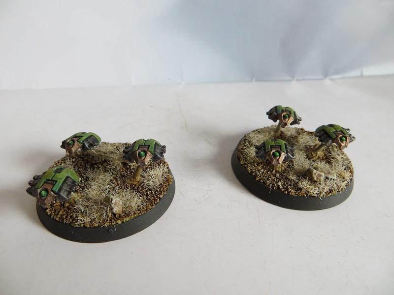 Scarabs II