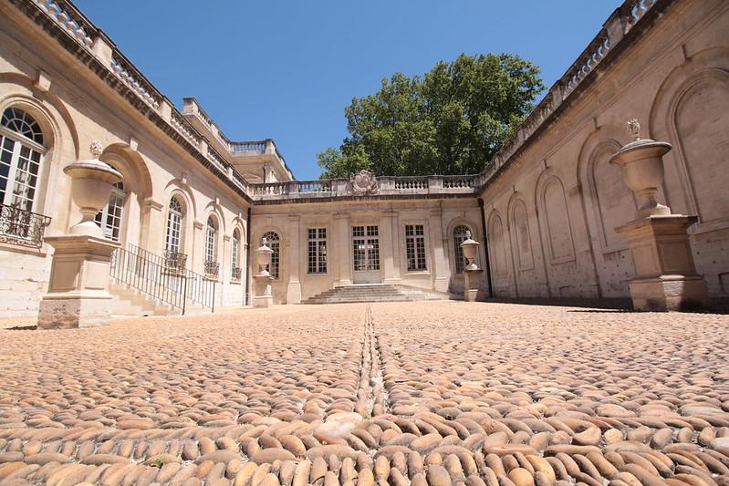 Provence cyling Avignon calvet museum 1
