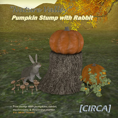 "@ SOS Event - [CIRCA] - ""Nature Valley"" - Pumpkin Stump with Rabbit"