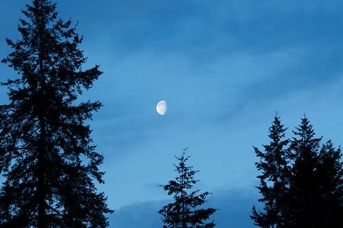 moon gibbous waining