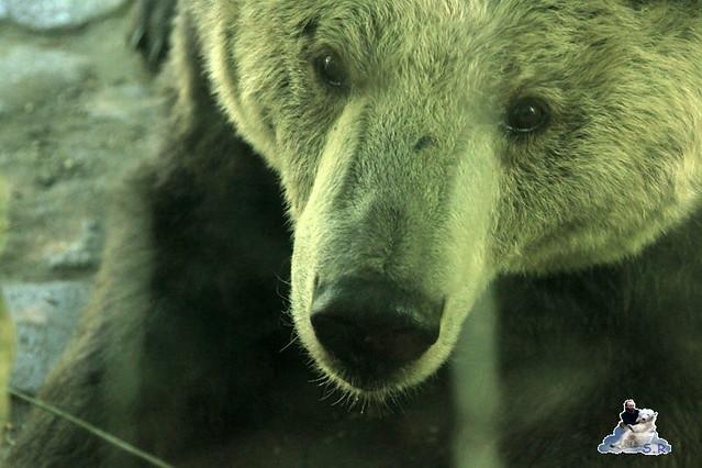 Zoo Eberswalde 04.06.2011 12