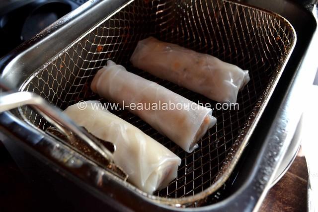 Rouleaux de Printemps ou Nems au Saumon et Crevettes © Ana Luthi