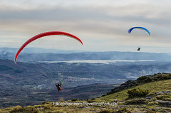 paragliding, parachute, air sports, sports, windsports, powered paragliding, extreme sport,