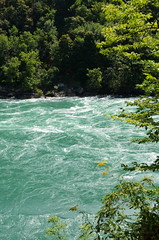 The Niagara River [Niagara Glen Nature Reserve - 19 August 2014]