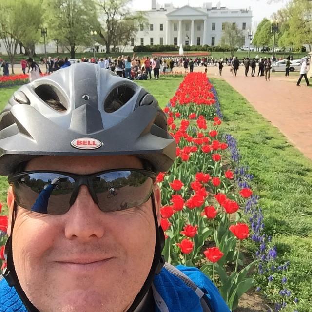 Tiptoeing through the tulips #selfiesunday #bikedc