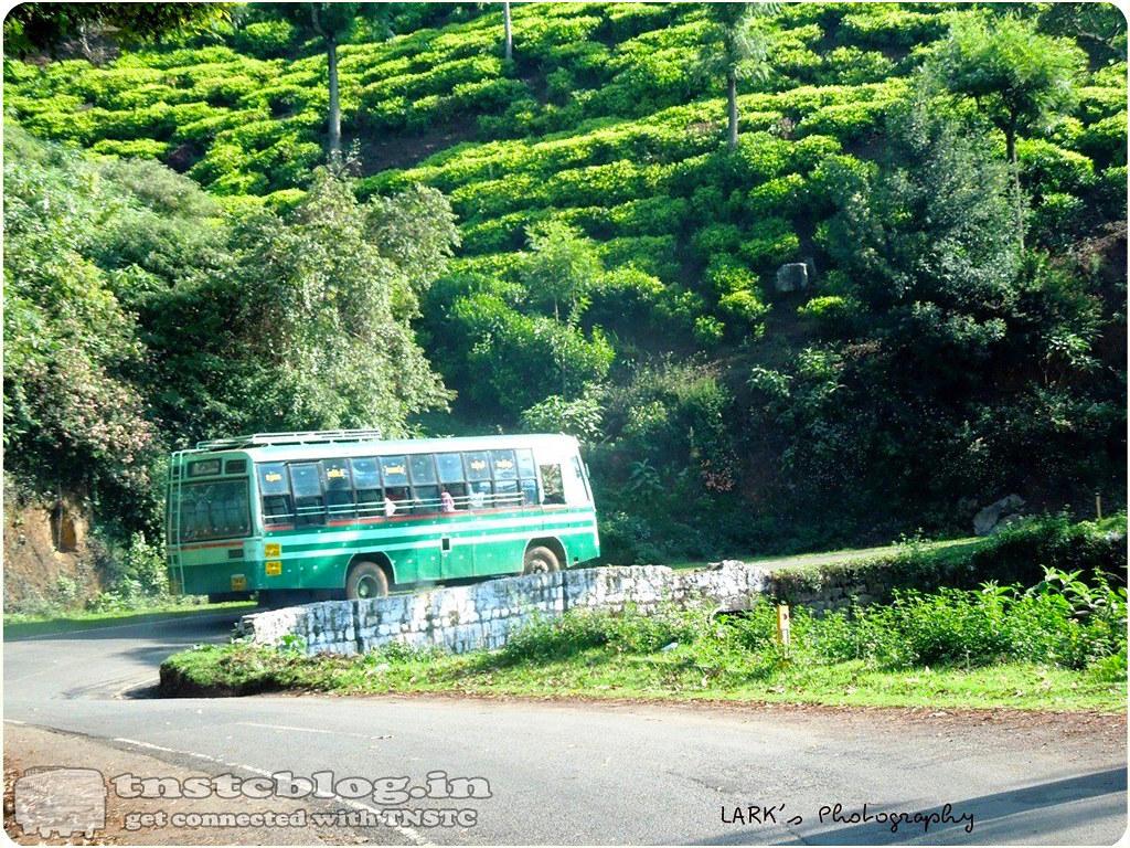 TN-43N-0531 Ooty - Geddai via Kaikatty, Manjoor, Mattakandi, Onikanndi.